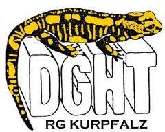 dghtbannerpfalz