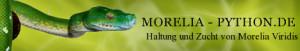 morelia-pythonbanner
